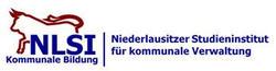 Externer Link: Logo NLSI